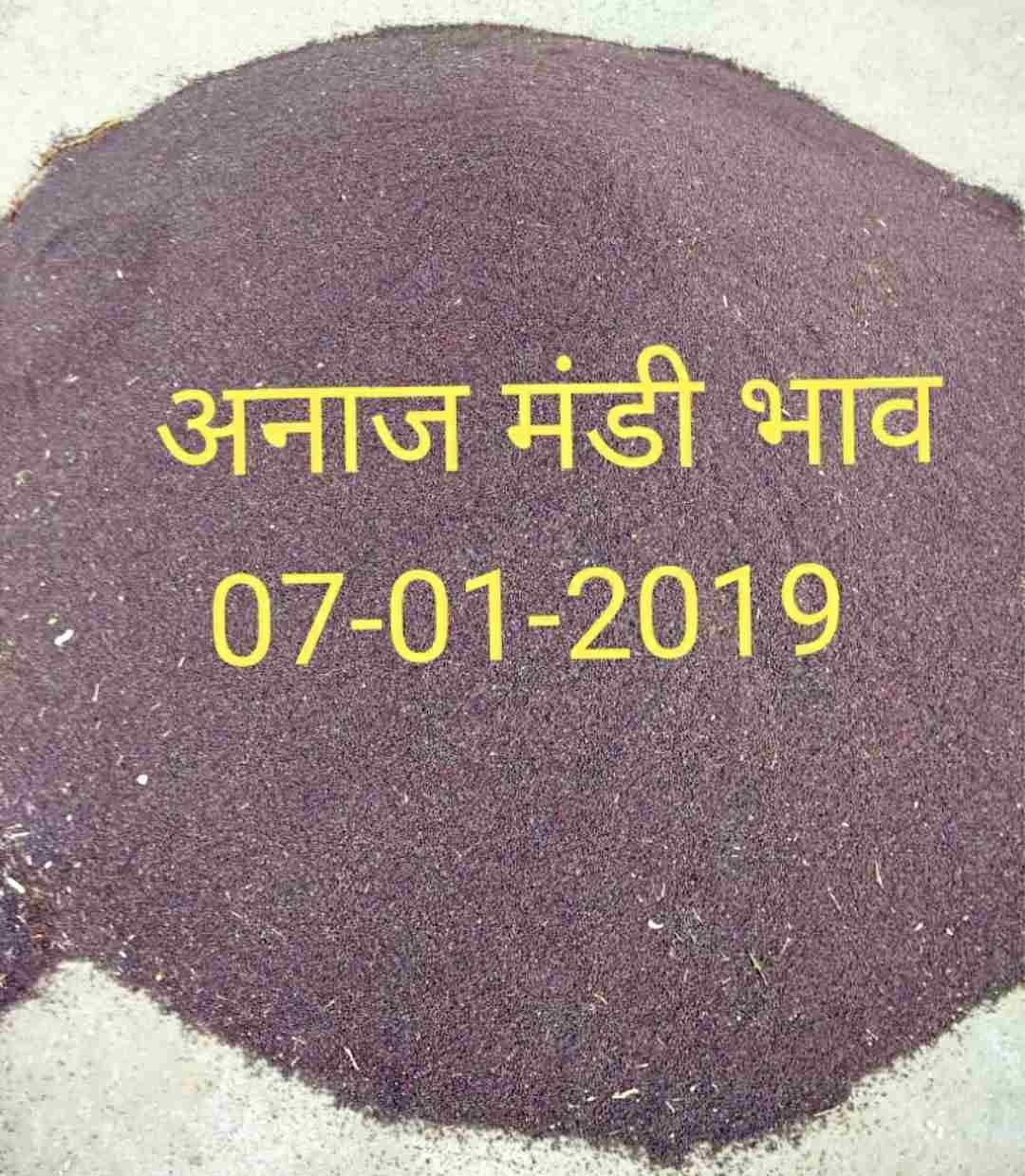 Anaj-mandi-bhav-07-01-2019