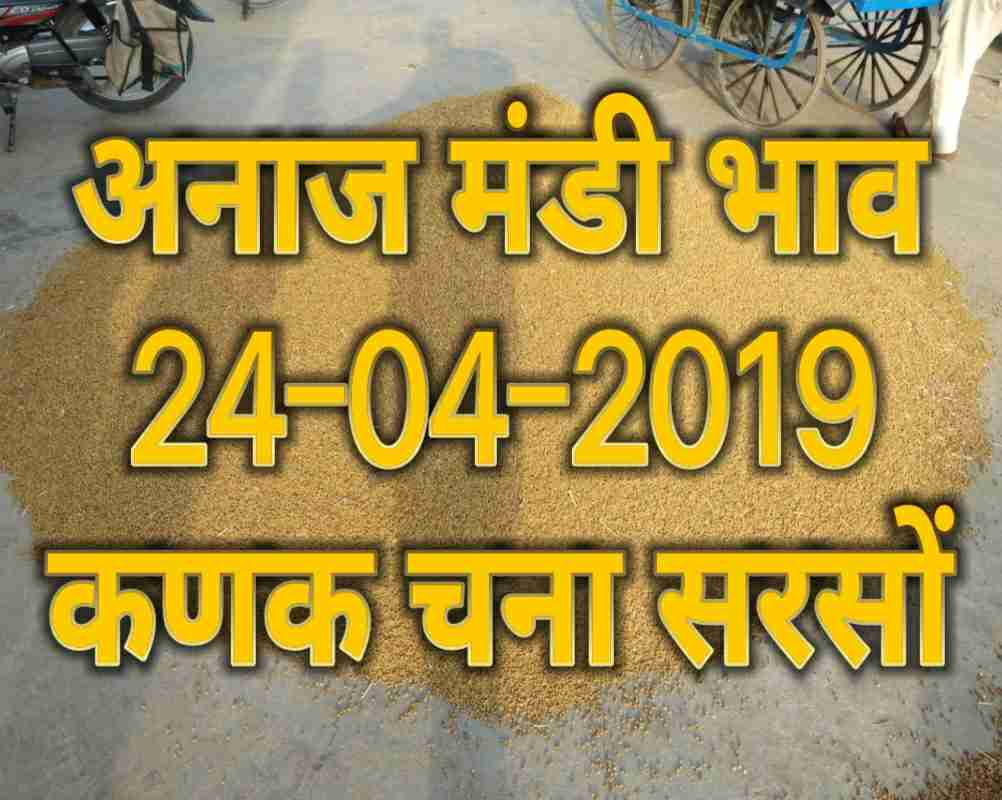 Mandi Bhav 24-05-2019 , Sarso Rates Today