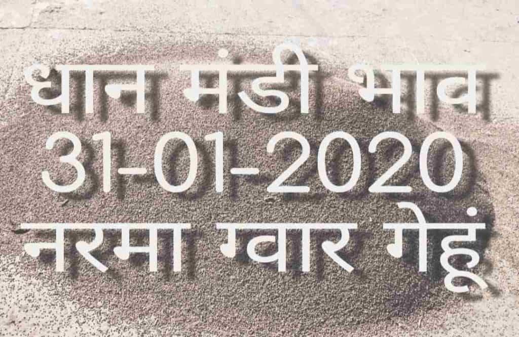 Mandi Bhav 31-01-2020 अनाज मंडी भाव